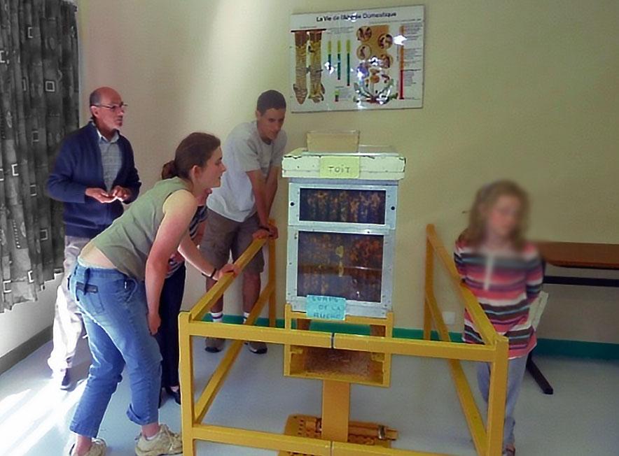 Musée de l'abeille de Toulouse